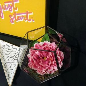 Peony in hexagon vase